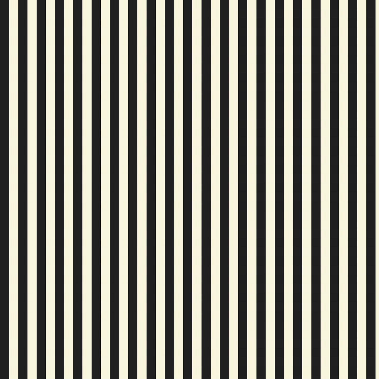 black and white stripes1jpg - photo #48